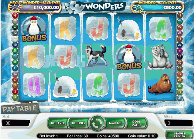 Icy Wonders slot gåva